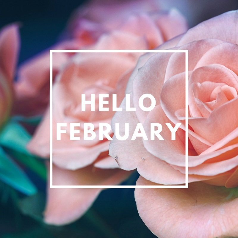 Simply-Shine - Hello February