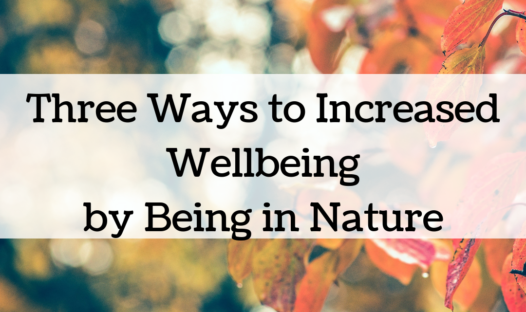 Three Ways to Increased Wellbeing by being in Nature