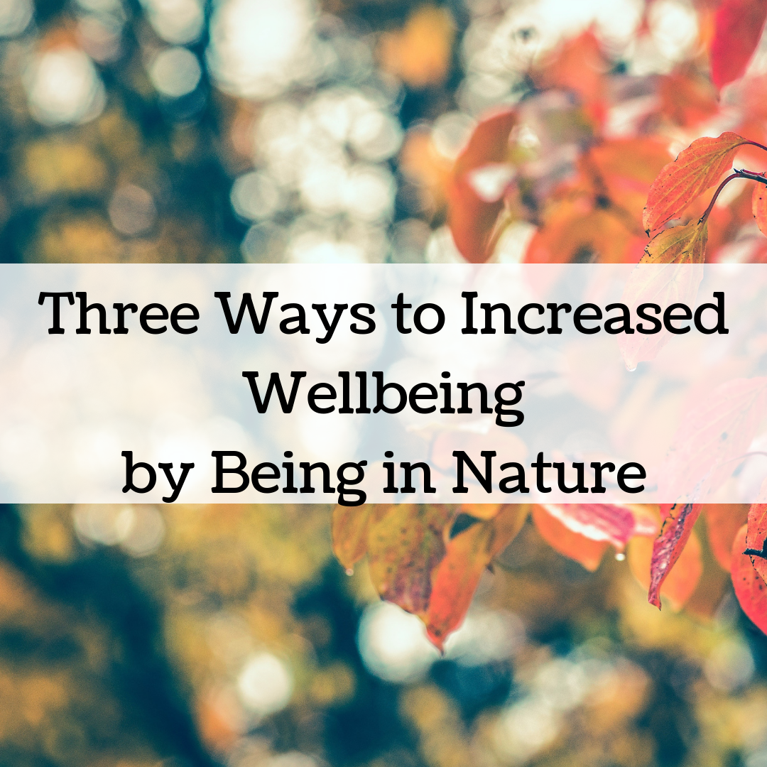 Three Ways to Increased Wellbeing by Being in Nature-Simply Shine